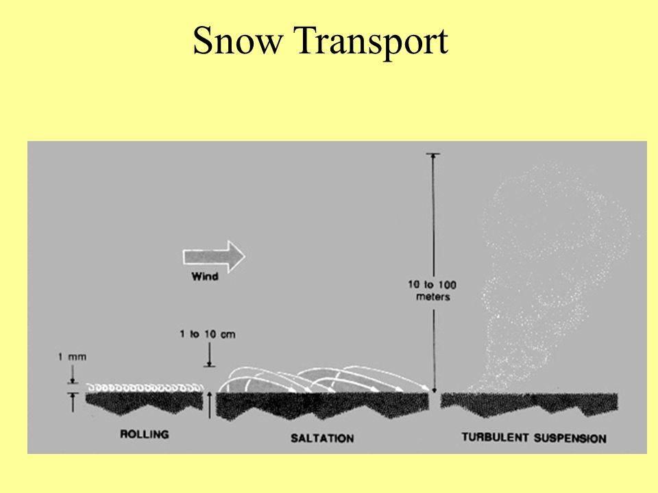 Snow Transport