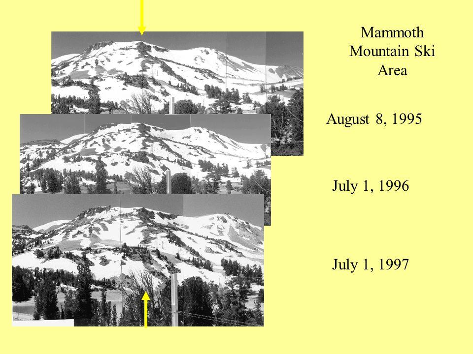 August 8, 1995 July 1, 1996 July 1, 1997 Mammoth Mountain Ski Area