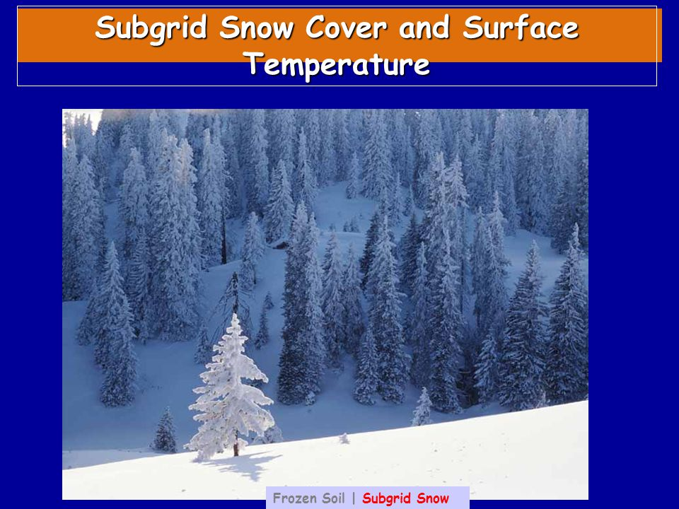 Subgrid Snow Cover and Surface Temperature Frozen Soil | Subgrid Snow