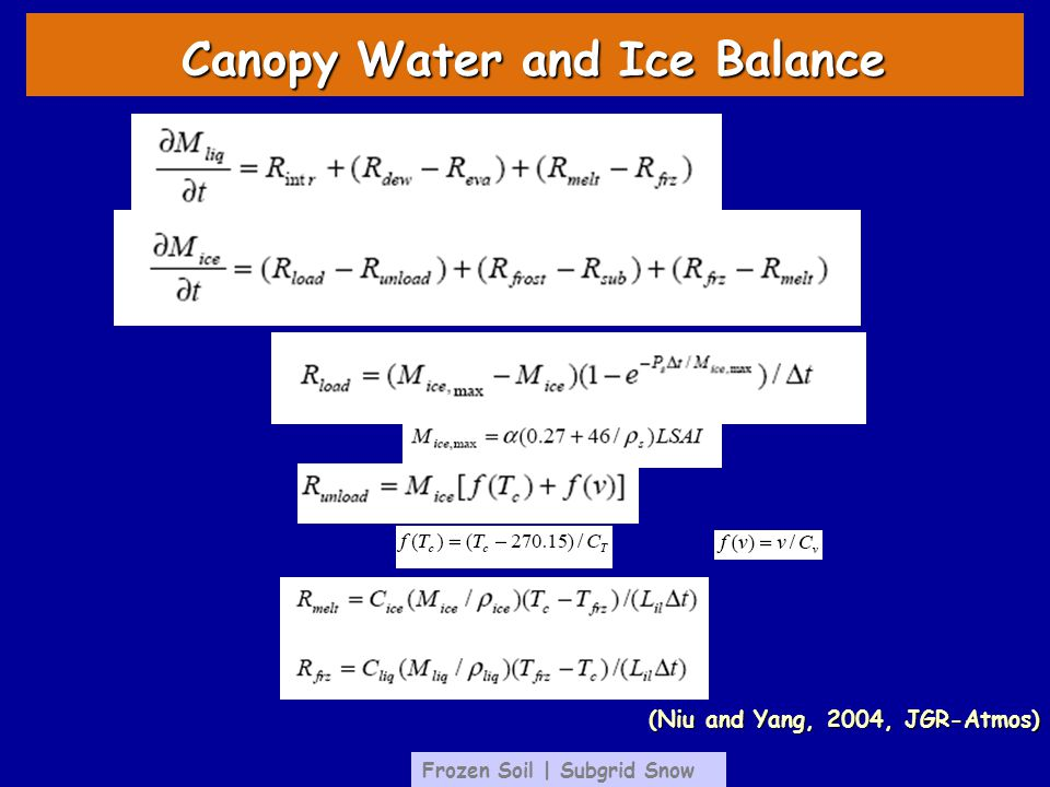 Canopy Water and Ice Balance Frozen Soil | Subgrid Snow (Niu and Yang, 2004, JGR-Atmos)