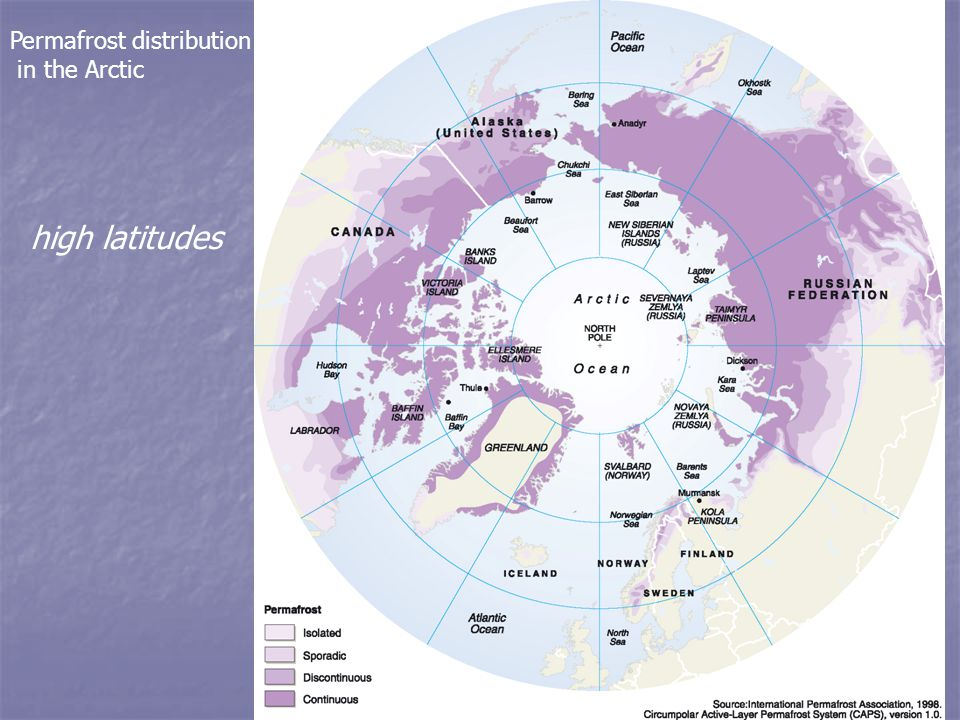 Permafrost distribution in the Arctic high latitudes