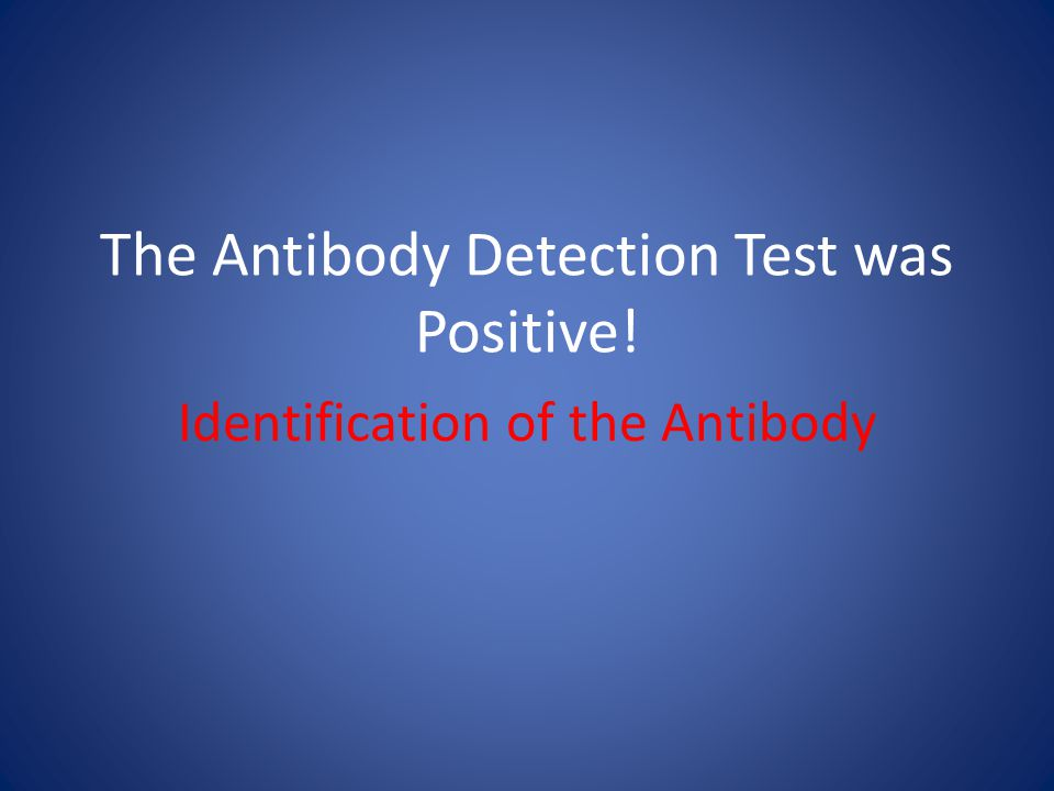 The Antibody Detection Test was Positive! Identification of the Antibody