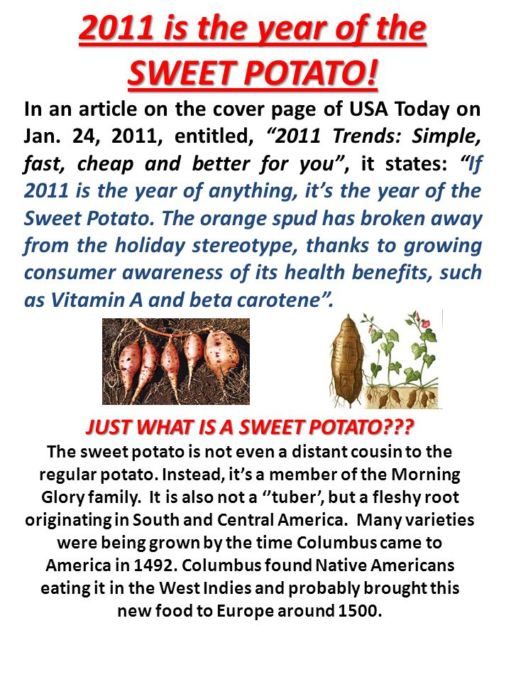 2011 is the year of the SWEET POTATO. In an article on the cover page of USA Today on Jan.