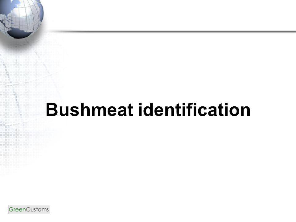 Bushmeat identification