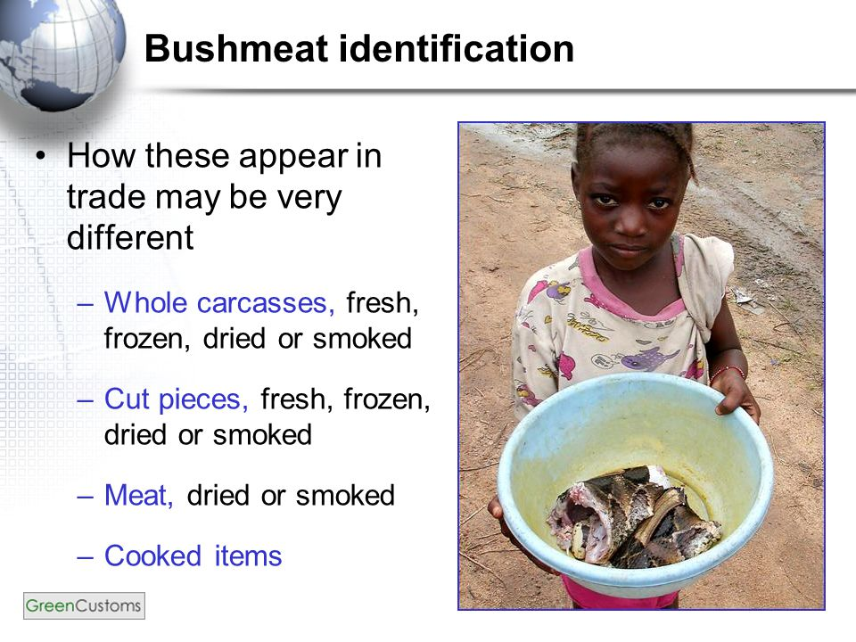 Bushmeat identification How these appear in trade may be very different –Whole carcasses, fresh, frozen, dried or smoked –Cut pieces, fresh, frozen, dried or smoked –Meat, dried or smoked –Cooked items