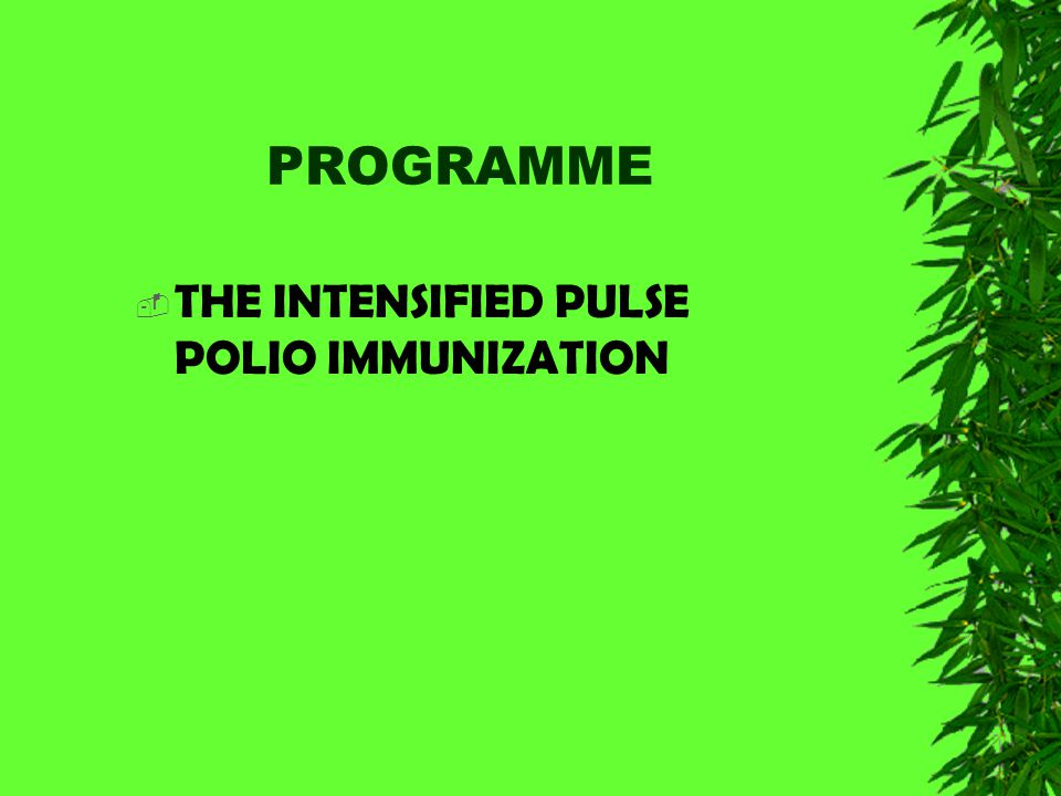 STRATEGY INTENSIFIED PULSE POLIO IMMUNIZATION PROGRAMME