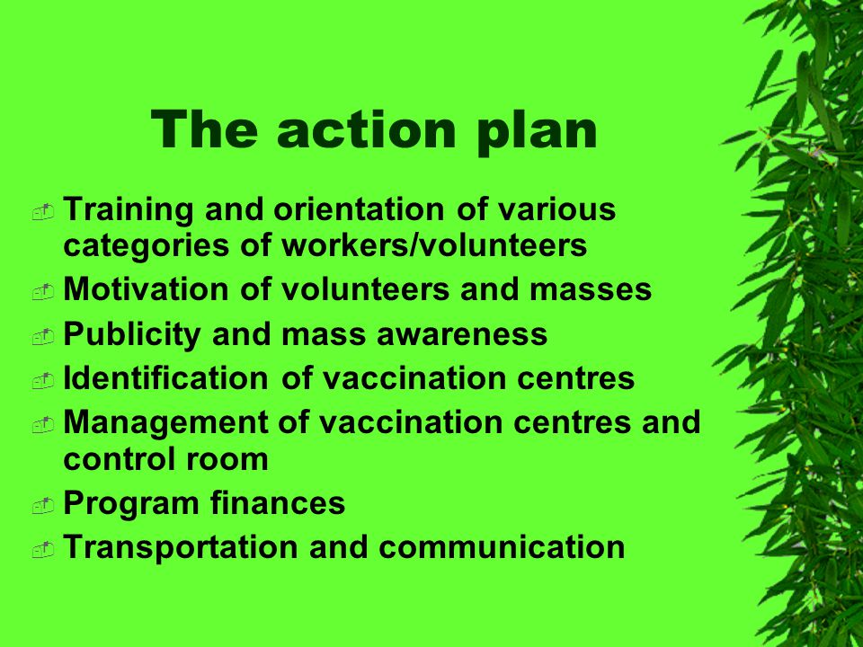 Strategic Planning  Developing a plan of action  Publicity and mass awareness  Management of vaccination day  Managing the immunization post