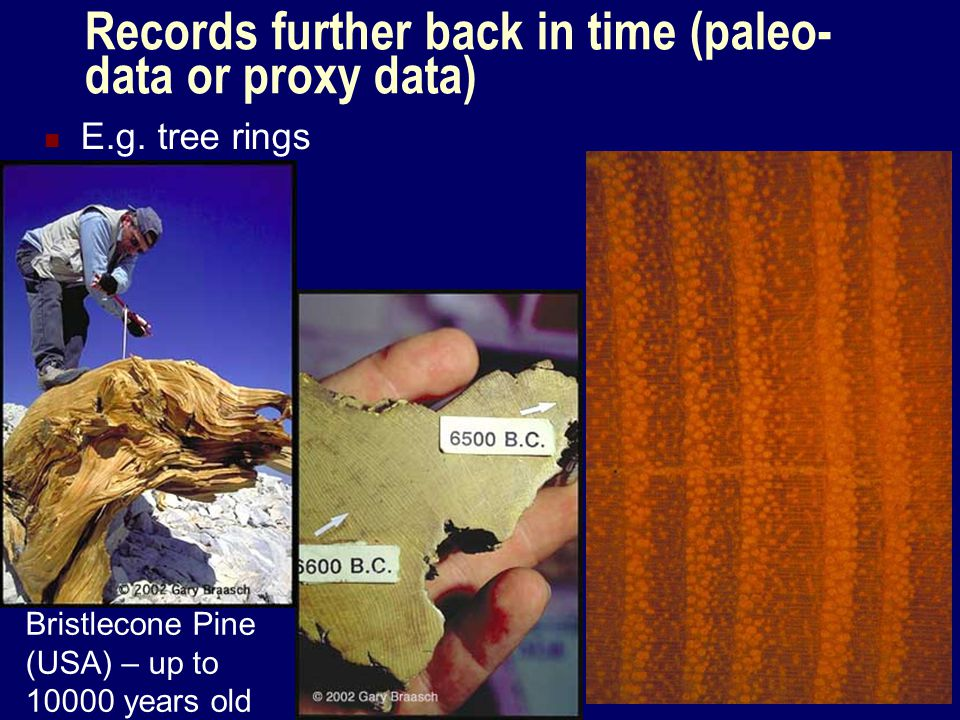 Records further back in time (paleo- data or proxy data) E.g. tree rings Bristlecone Pine (USA) – up to 10000 years old