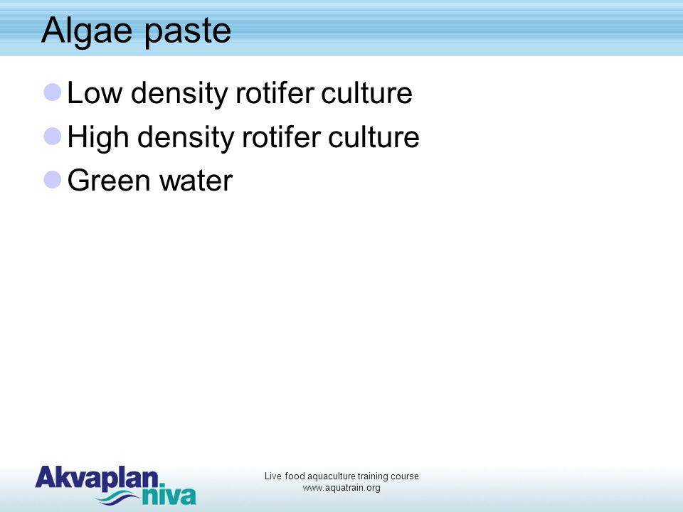 Live food aquaculture training course www.aquatrain.org Artemia enrichment Nauplii enriched with Schizochytrium sp.