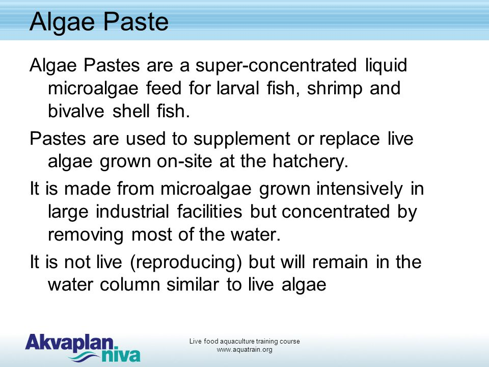 Live food aquaculture training course www.aquatrain.org Algae Paste Algae Pastes are a super-concentrated liquid microalgae feed for larval fish, shri
