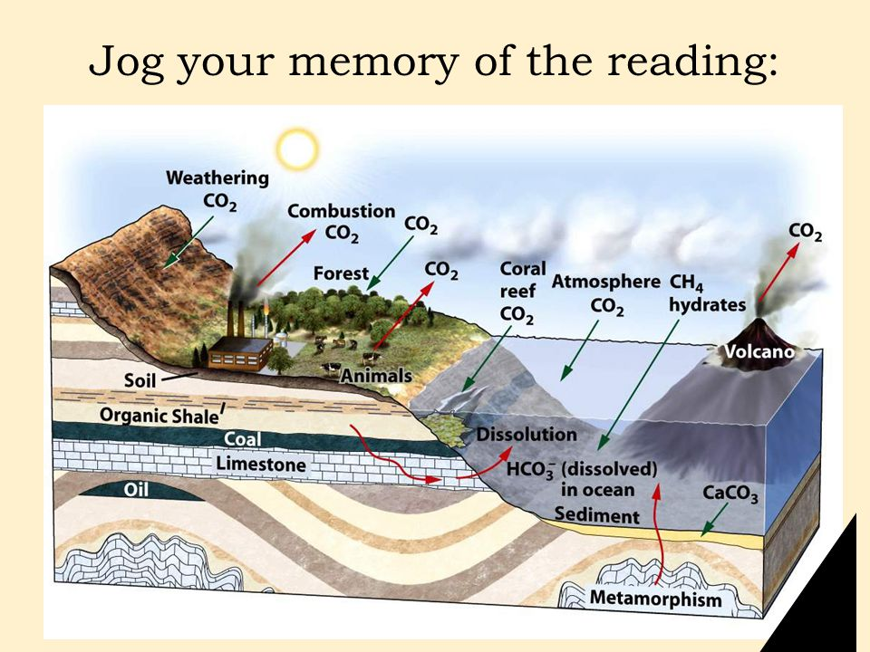 Jog your memory of the reading: