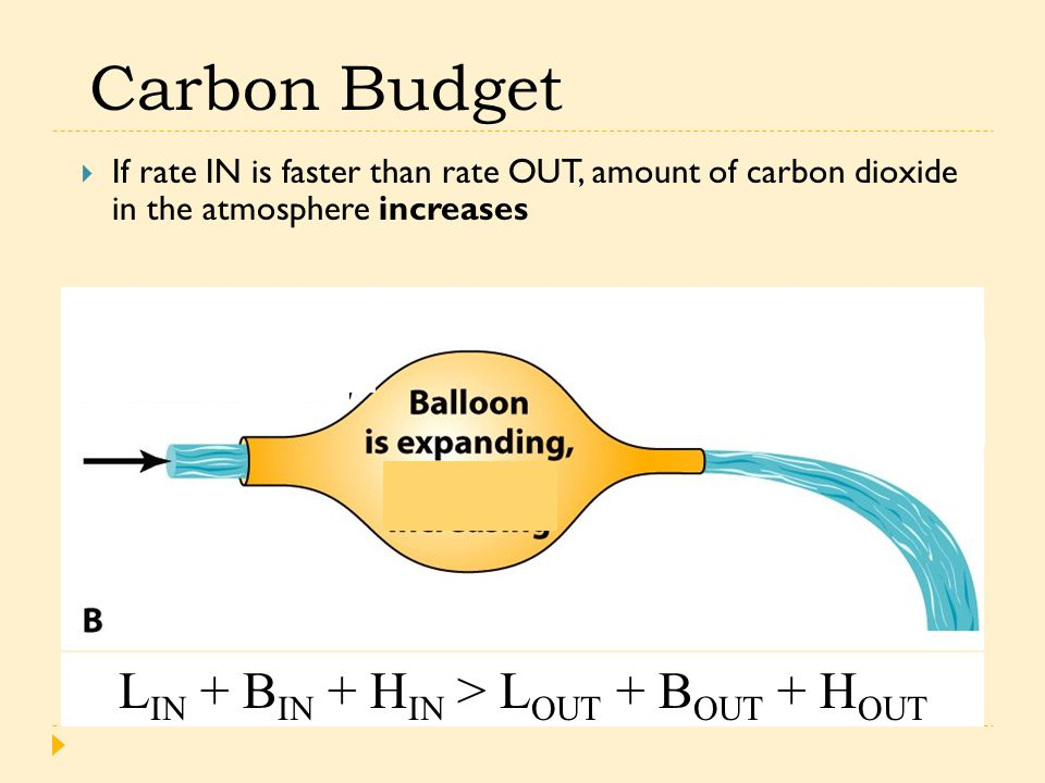 Carbon Budget  If rate IN is faster than rate OUT, amount of carbon dioxide in the atmosphere increases L IN + B IN + H IN > L OUT + B OUT + H OUT