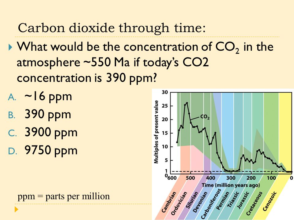 Carbon dioxide through time:  What would be the concentration of CO 2 in the atmosphere ~550 Ma if today's CO2 concentration is 390 ppm? A. ~16 ppm B