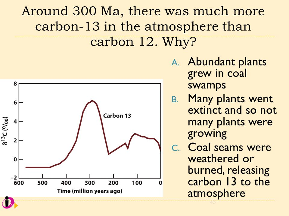 Around 300 Ma, there was much more carbon-13 in the atmosphere than carbon 12. Why? A. Abundant plants grew in coal swamps B. Many plants went extinct