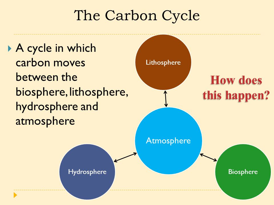 The Carbon Cycle  A cycle in which carbon moves between the biosphere, lithosphere, hydrosphere and atmosphere Atmosphere LithosphereBiosphereHydrosphere How does this happen?