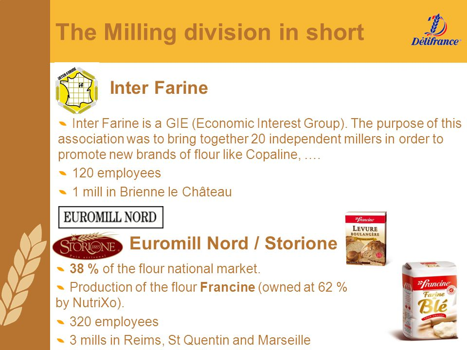 The Milling division in short Inter Farine is a GIE (Economic Interest Group). The purpose of this association was to bring together 20 independent mi