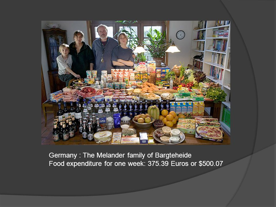 Germany : The Melander family of Bargteheide Food expenditure for one week: 375.39 Euros or $500.07