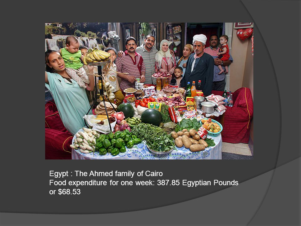 Egypt : The Ahmed family of Cairo Food expenditure for one week: 387.85 Egyptian Pounds or $68.53