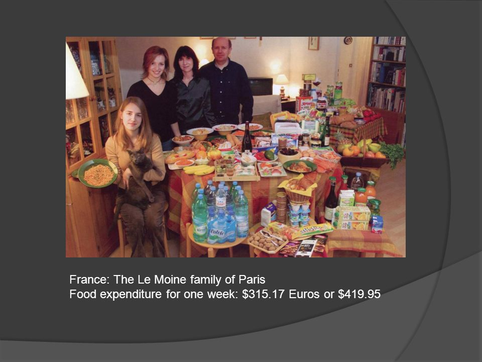 France: The Le Moine family of Paris Food expenditure for one week: $315.17 Euros or $419.95
