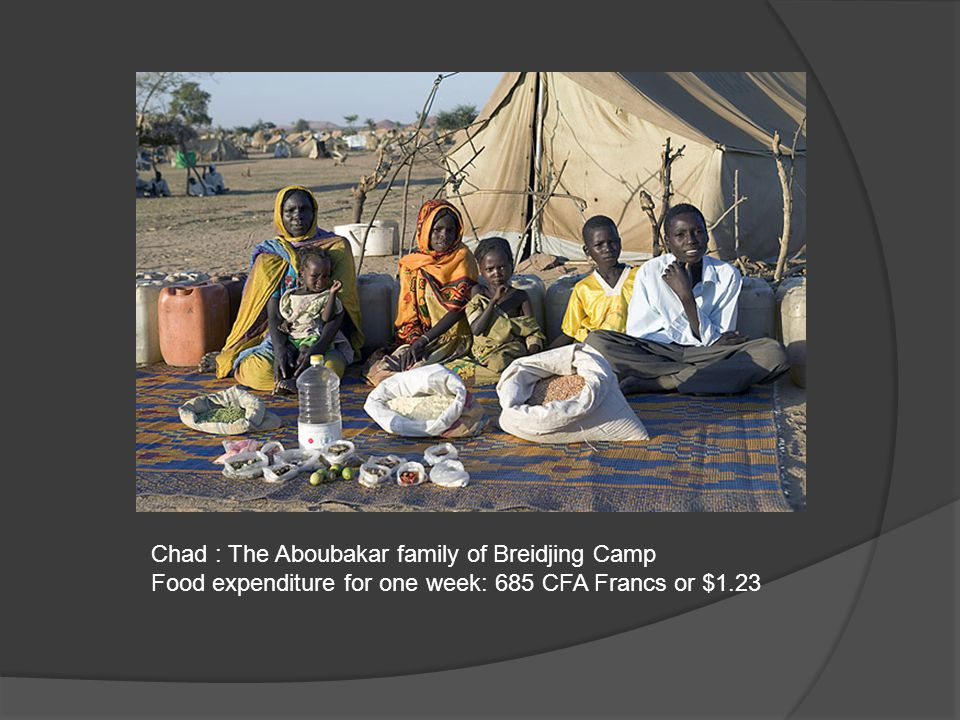 Chad: The Mustapha family of Dar es Salaam Village Food expenditure for one week: 10,200 CFA Francs or $18.33
