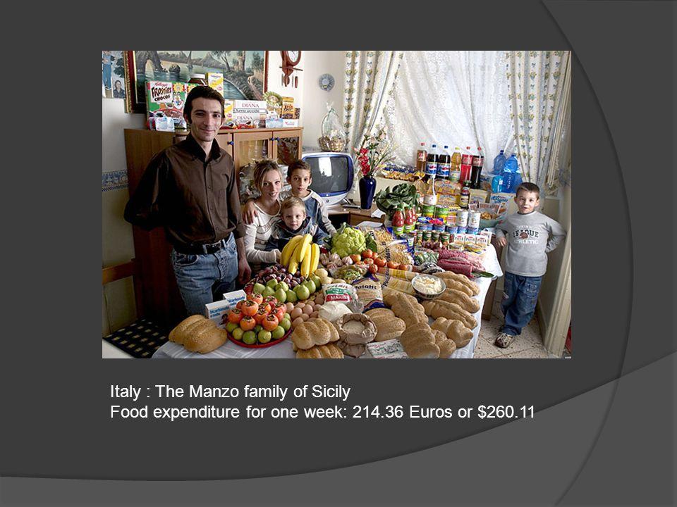 Germany : The Melander family of Bargteheide Food expenditure for one week: 375.39 Euros or $500.07