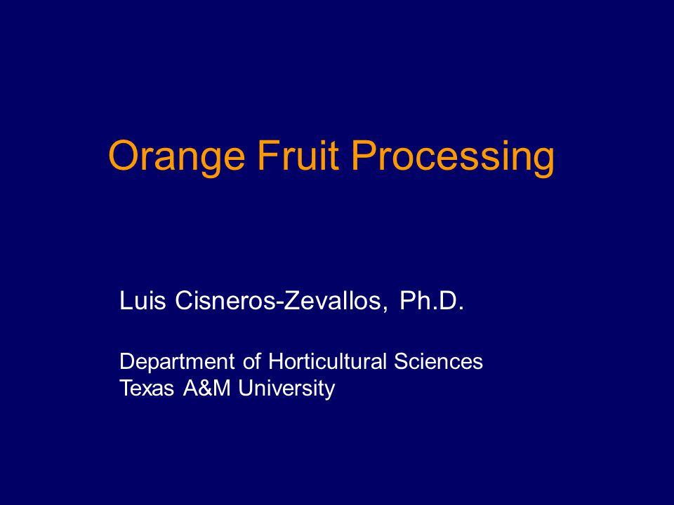 Orange Fruit Processing Luis Cisneros-Zevallos, Ph.D. Department of Horticultural Sciences Texas A&M University
