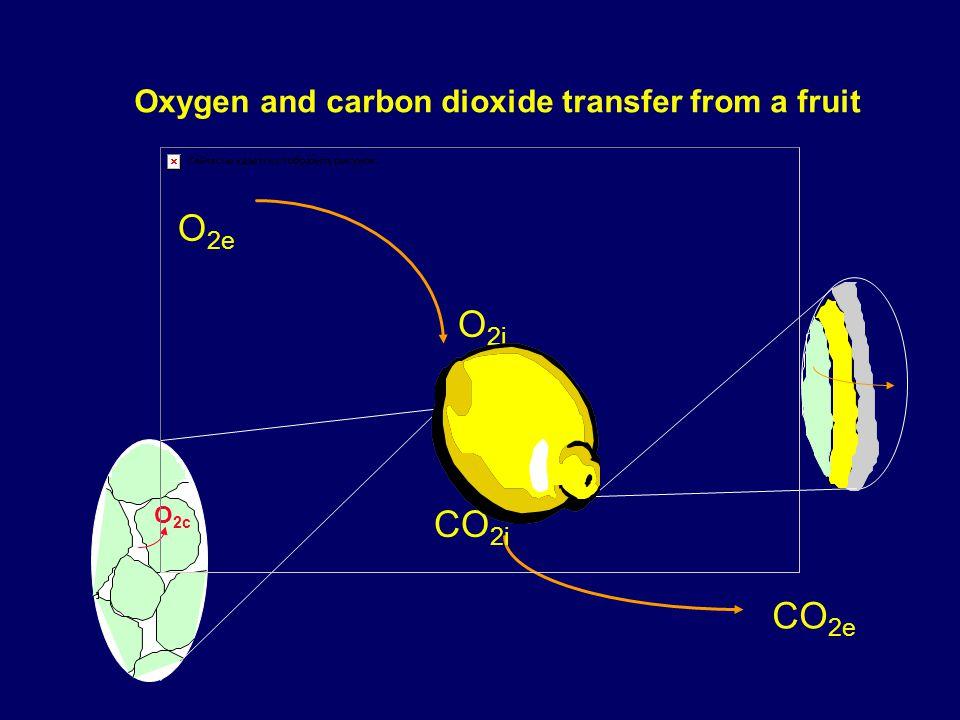 O 2e CO 2e Oxygen and carbon dioxide transfer from a fruit O 2c O 2i CO 2i