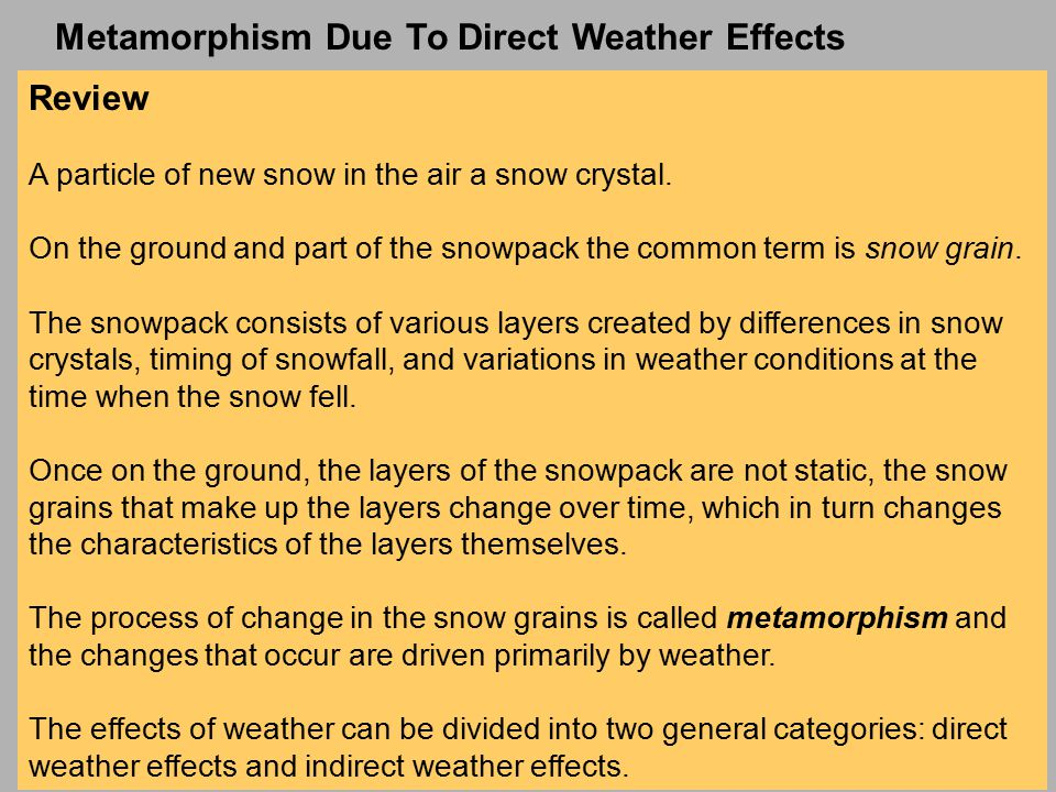 Review A particle of new snow in the air a snow crystal.