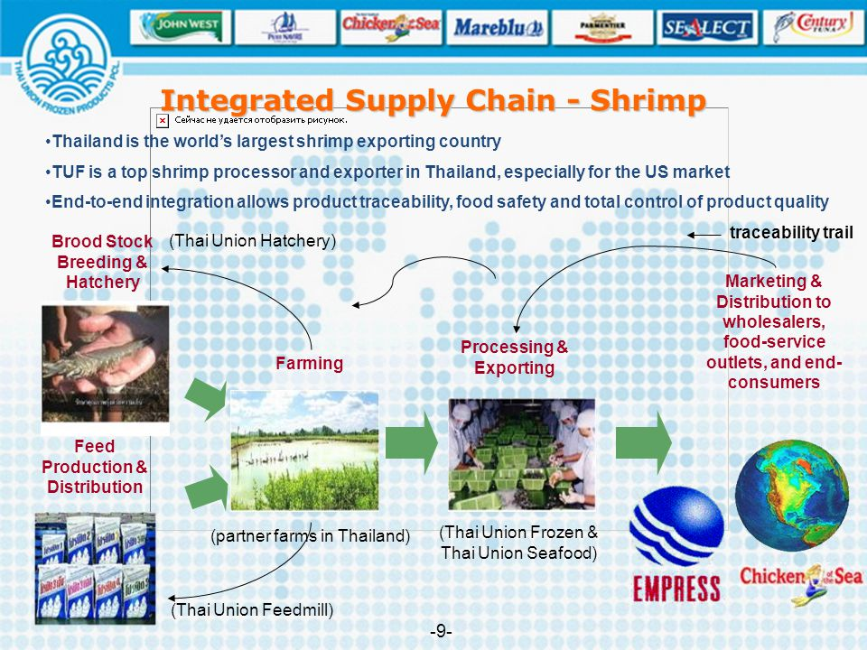 Integrated Supply Chain - Shrimp -9--9- Thailand is the world's largest shrimp exporting country TUF is a top shrimp processor and exporter in Thailan