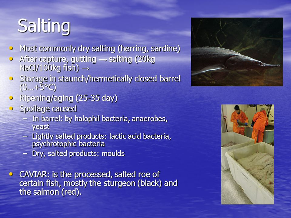 Salting Most commonly dry salting (herring, sardine) Most commonly dry salting (herring, sardine) After capture, gutting → salting (20kg NaCl/100kg fish) → After capture, gutting → salting (20kg NaCl/100kg fish) → Storage in staunch/hermetically closed barrel (0…+5°C) Storage in staunch/hermetically closed barrel (0…+5°C) Ripening/aging (25-35 day) Ripening/aging (25-35 day) Spoilage caused Spoilage caused –In barrel: by halophil bacteria, anaerobes, yeast –Lightly salted products: lactic acid bacteria, psychrotophic bacteria –Dry, salted products: moulds CAVIAR: is the processed, salted roe of certain fish, mostly the sturgeon (black) and the salmon (red).