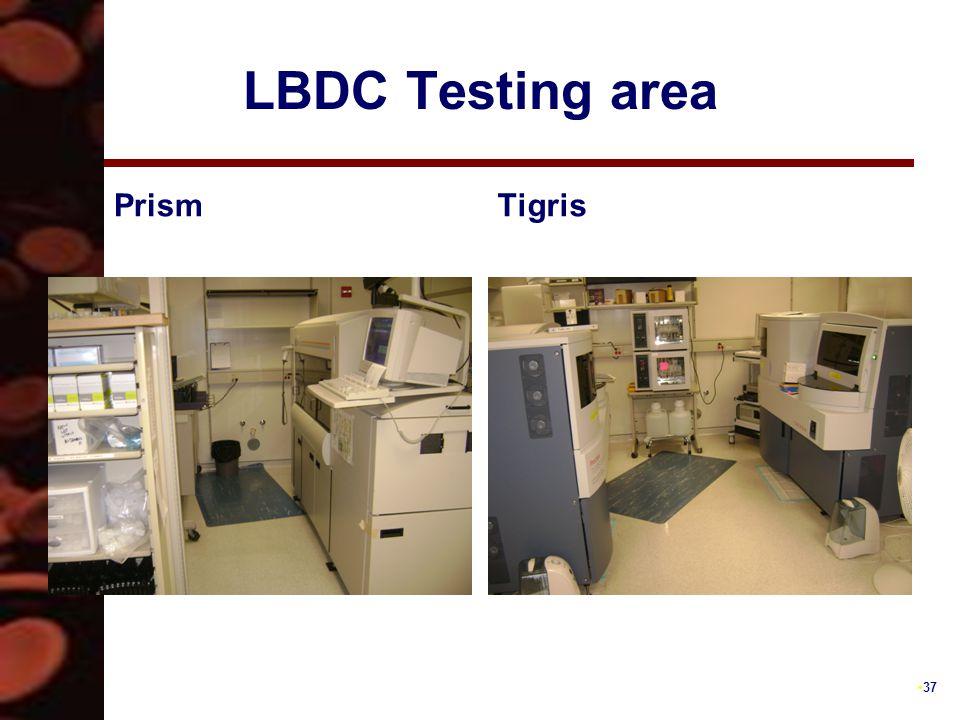 37 LBDC Testing area PrismTigris
