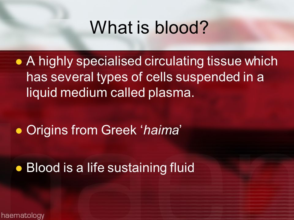 What is blood.
