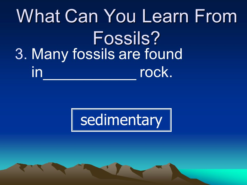 What Can You Learn From Fossils.