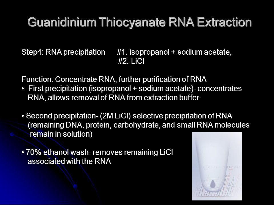 Guanidinium Thiocyanate RNA Extraction Step4: RNA precipitation #1.