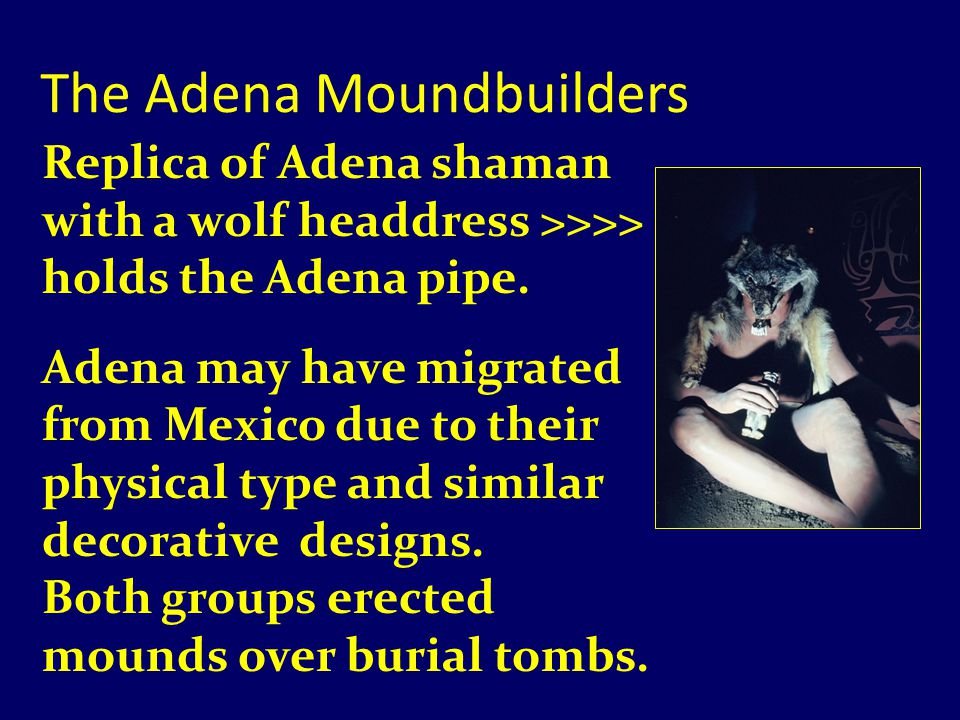 The Adena Moundbuilders Replica of Adena shaman with a wolf headdress >>>> holds the Adena pipe.