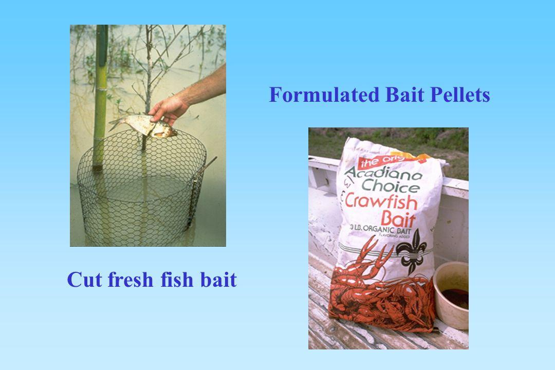 Formulated Bait Pellets Cut fresh fish bait