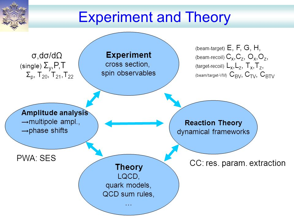 Experiment and Theory Experiment cross section, spin observables Theory LQCD, quark models, QCD sum rules, … Reaction Theory dynamical frameworks Amplitude analysis →multipole ampl., →phase shifts σ,dσ/dΩ (single) Σ y,P,T Σ p, T 20, T 21,T 22 (beam-target) E, F, G, H, (beam-recoil) C x,C z, O x,O z, (target-recoil) L x,L z, T x,T z, (beam/target-VM) C BV, C TV, C BTV PWA: SES CC: res.