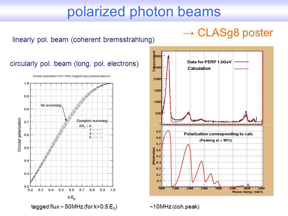 CLAS polarized targets existing dynamically pol.NH 3 target: P~80%, P~35% (deuterized) pol.