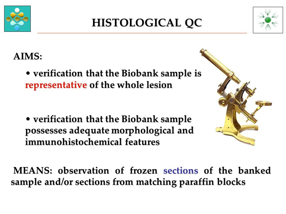 AIMS: AIMS: verification that the Biobank sample is representative of the whole lesion verification that the Biobank sample is representative of the whole lesion verification that the Biobank sample possesses adequate morphological and immunohistochemical features verification that the Biobank sample possesses adequate morphological and immunohistochemical features HISTOLOGICAL QC MEANS: observation of frozen sections of the banked sample and/or sections from matching paraffin blocks MEANS: observation of frozen sections of the banked sample and/or sections from matching paraffin blocks