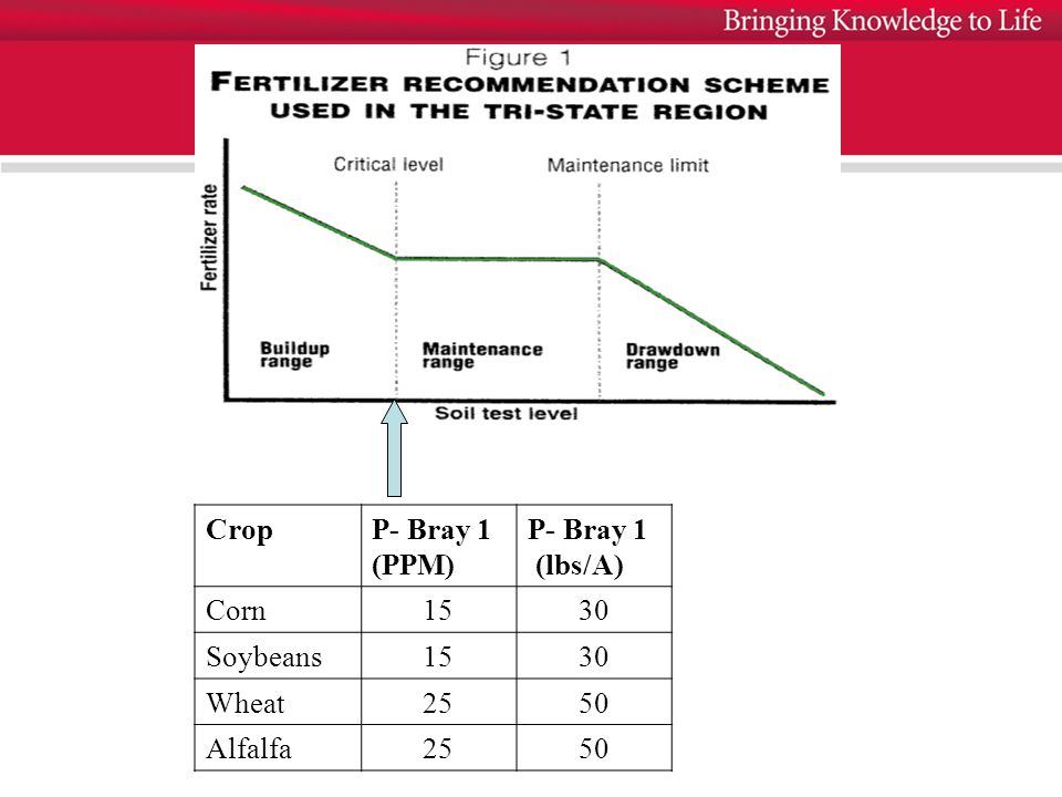 CropP- Bray 1 (PPM) P- Bray 1 (lbs/A) Corn1530 Soybeans1530 Wheat2550 Alfalfa2550