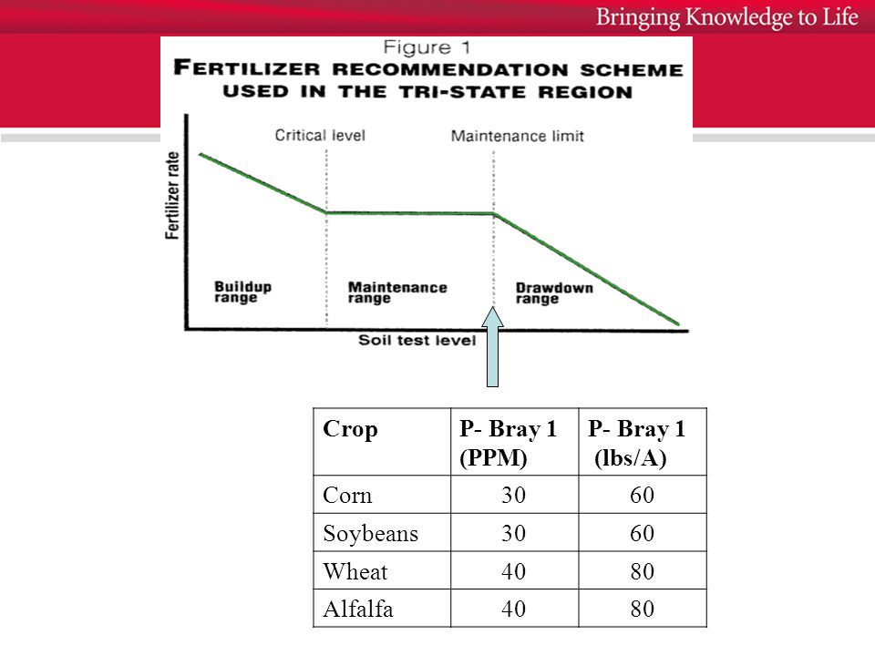 CropP- Bray 1 (PPM) P- Bray 1 (lbs/A) Corn3060 Soybeans3060 Wheat4080 Alfalfa4080