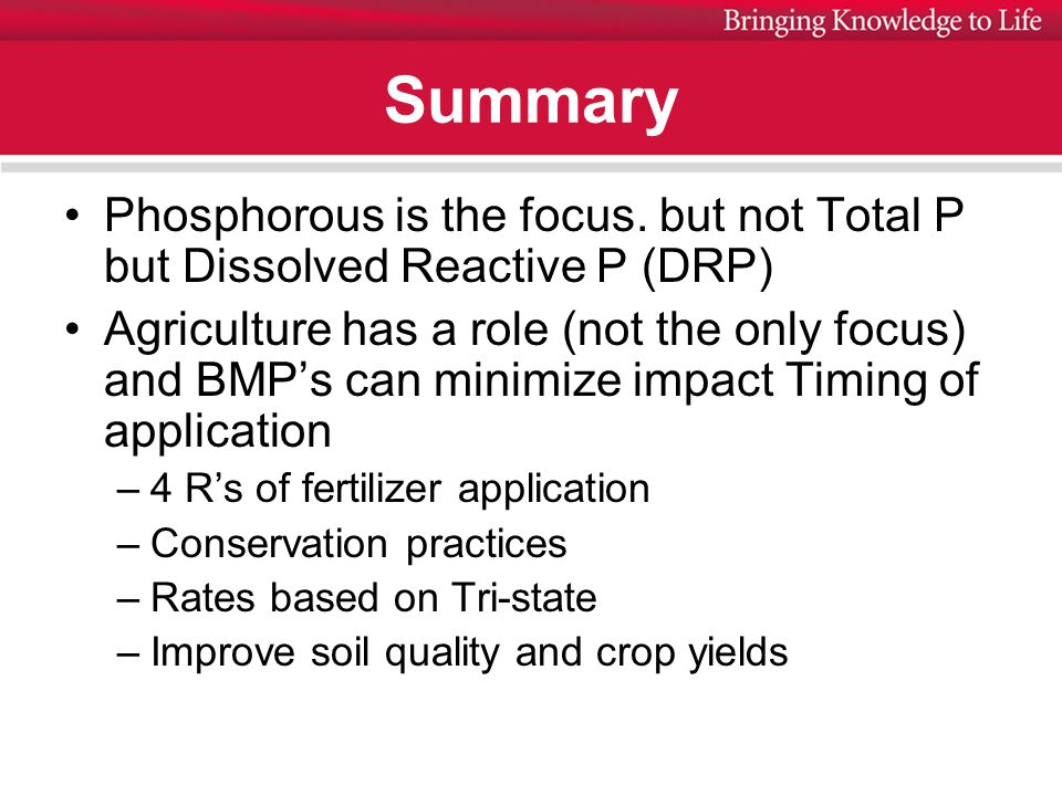 Summary Phosphorous is the focus.