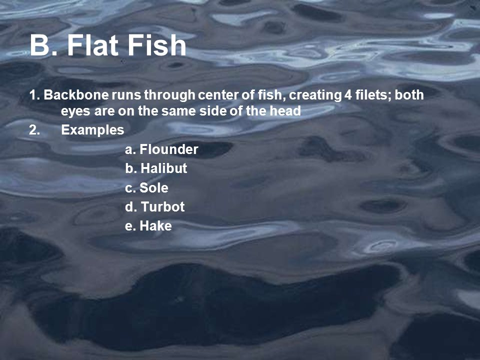 B. Flat Fish 1. Backbone runs through center of fish, creating 4 filets; both eyes are on the same side of the head 2.Examples a. Flounder b. Halibut
