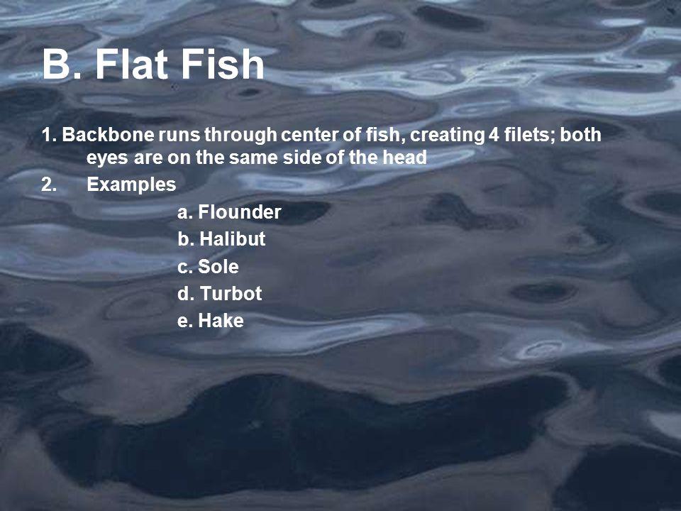 B. Flat Fish 1.