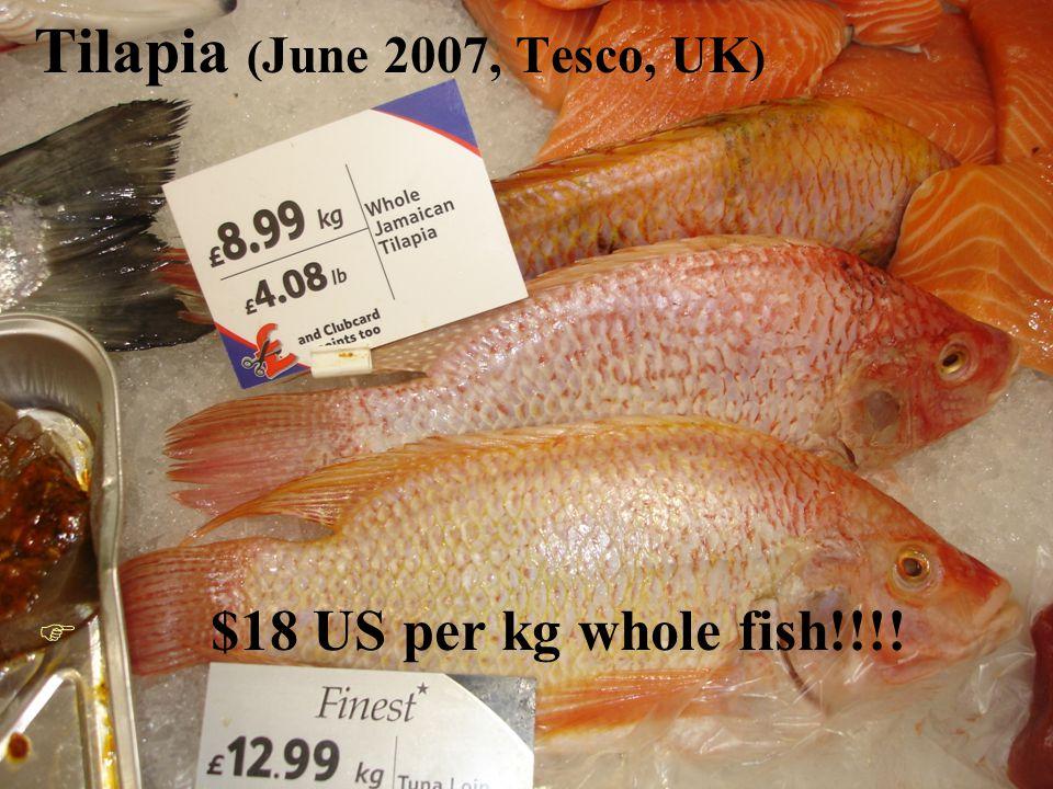 Tilapia ( June 2007, Tesco, UK ) F $18 US per kg whole fish!!!!