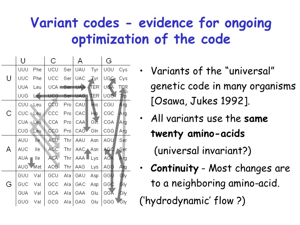 "Variant codes - evidence for ongoing optimization of the code Variants of the ""universal"" genetic code in many organisms [Osawa, Jukes 1992]. All vari"
