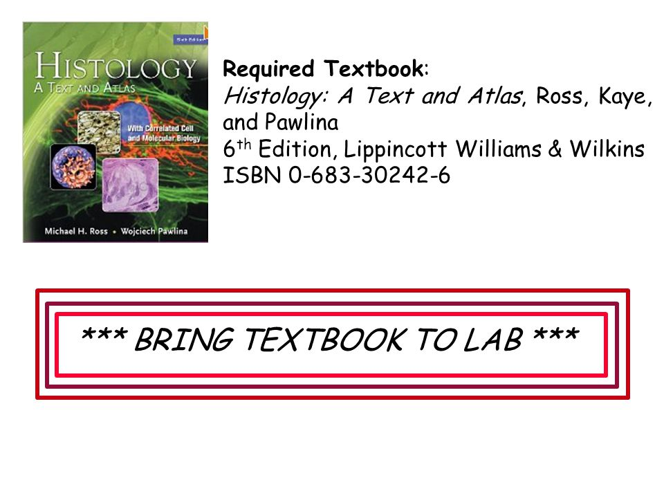 Required Textbook: Histology: A Text and Atlas, Ross, Kaye, and Pawlina 6 th Edition, Lippincott Williams & Wilkins ISBN 0-683-30242-6 *** BRING TEXTB