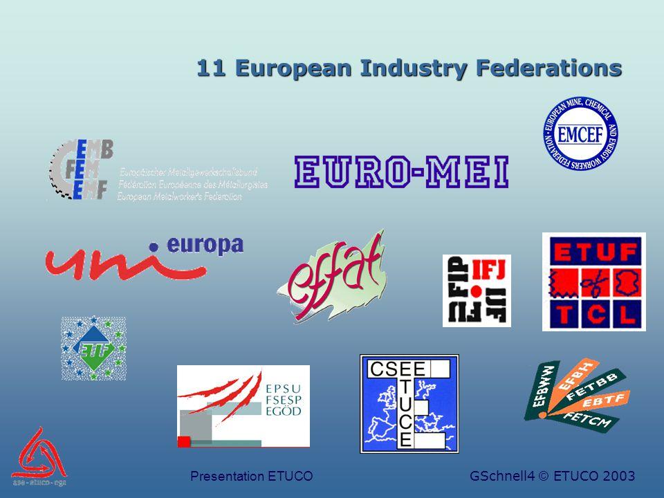 Presentation ETUCOGSchnell4 © ETUCO 2003 11 European Industry Federations