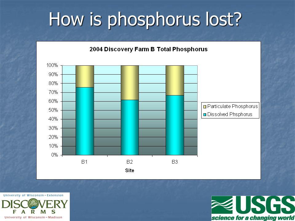 How is phosphorus lost?