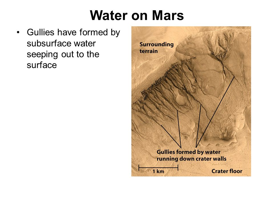 Water on Mars Gullies have formed by subsurface water seeping out to the surface